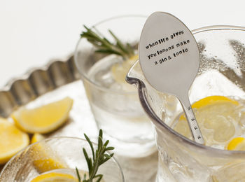 gine and tonic metal stirrer engraved with when life gives you lemons madke gin and tonic